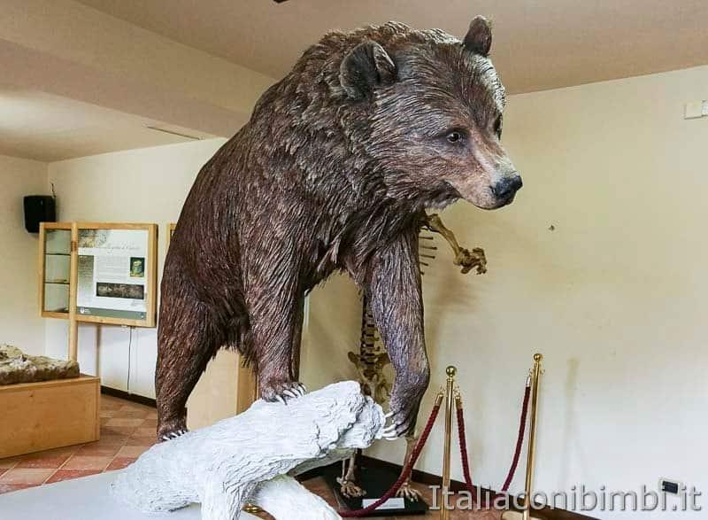 Palena - MOM museo dell'orso
