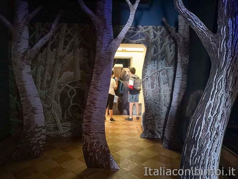 Palena - MOM museo dell'orso marsicano