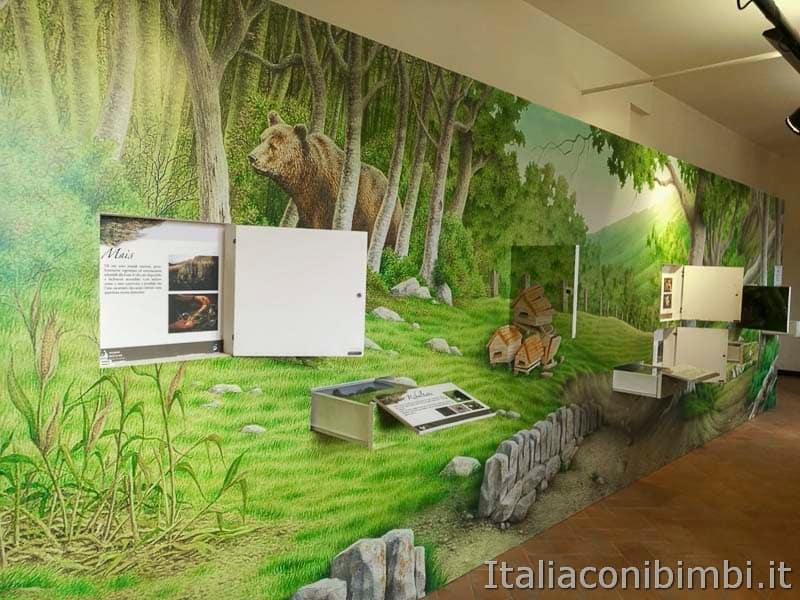 Palena - museo dell'orso marsicano pannelli interattivi