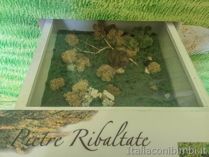 Palena - museo dell'orso marsicano pietre