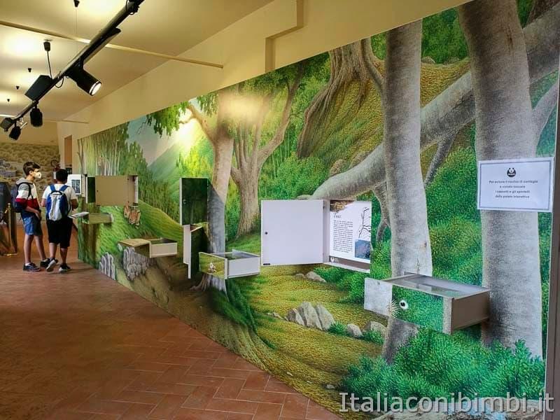 Palena - museo dell'orso pannelli interattivi