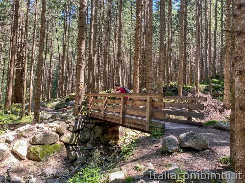 Cascate di Riva - Valle Aurina - ponticello di legno