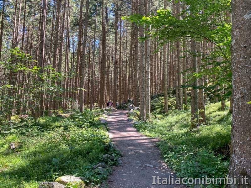 Cascate di Riva - Valle Aurina - sentiero