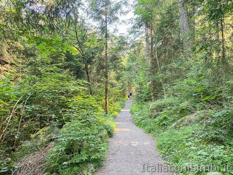 Cascate di Riva - Valle Aurina - sentiero per le cascate