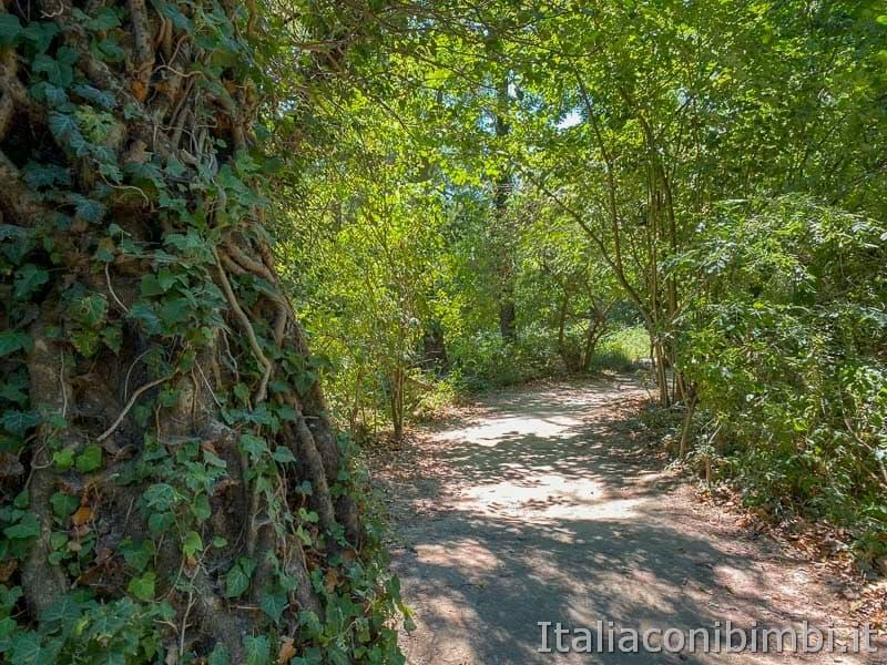Gola del Furlo - passeggiata lungo il fiume Candigliano