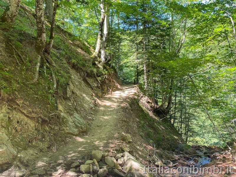 Il Ceppo - sentiero per la cascata Morricana