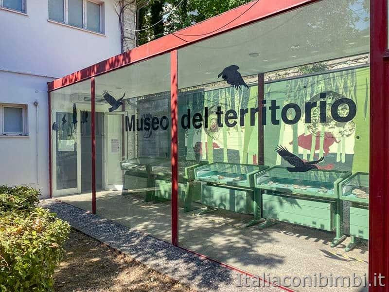 Riserva naturale Gola del Furlo - museo del territorio - vetrata