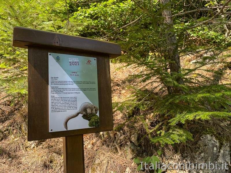 Roccaraso - sentiero 101 cartello scoiattolo