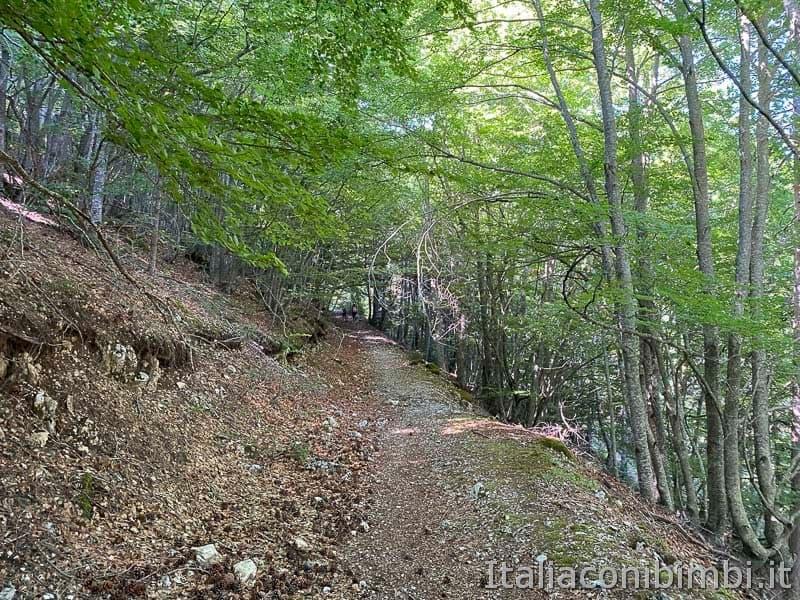 Roccaraso - sentiero 101 salita