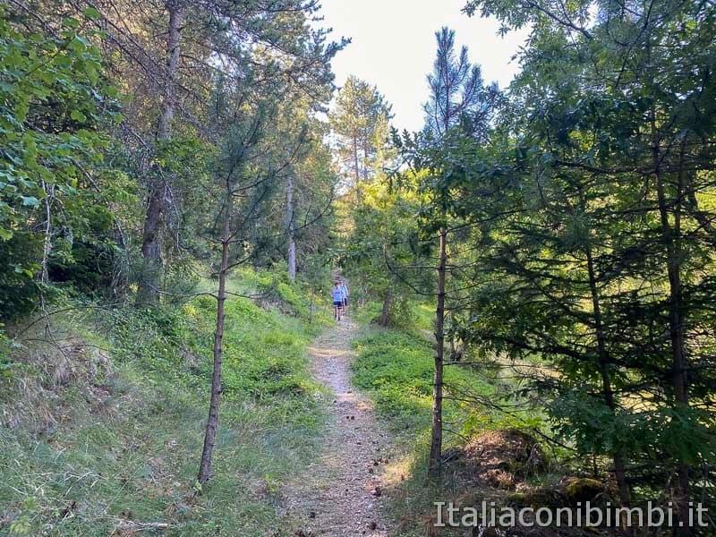 Roccaraso - sentiero 101