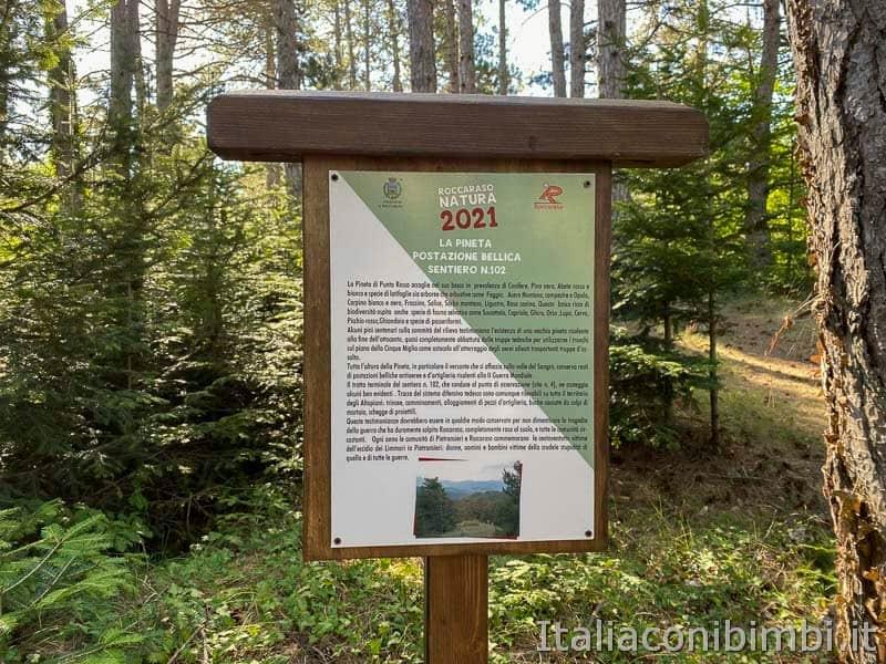 Roccaraso - sentiero 102 la pineta