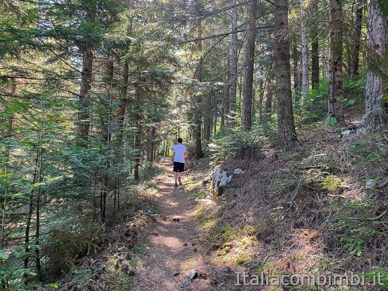 Roccaraso - sentiero 102 ragazzo nel bosco
