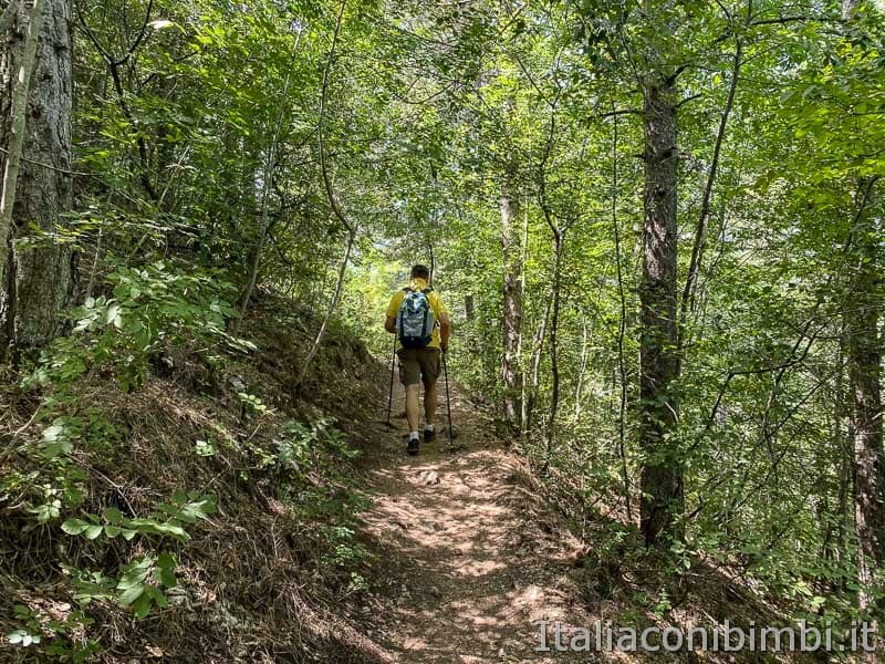 Sentiero del cuore - lago di Scanno - percorso nel bosco