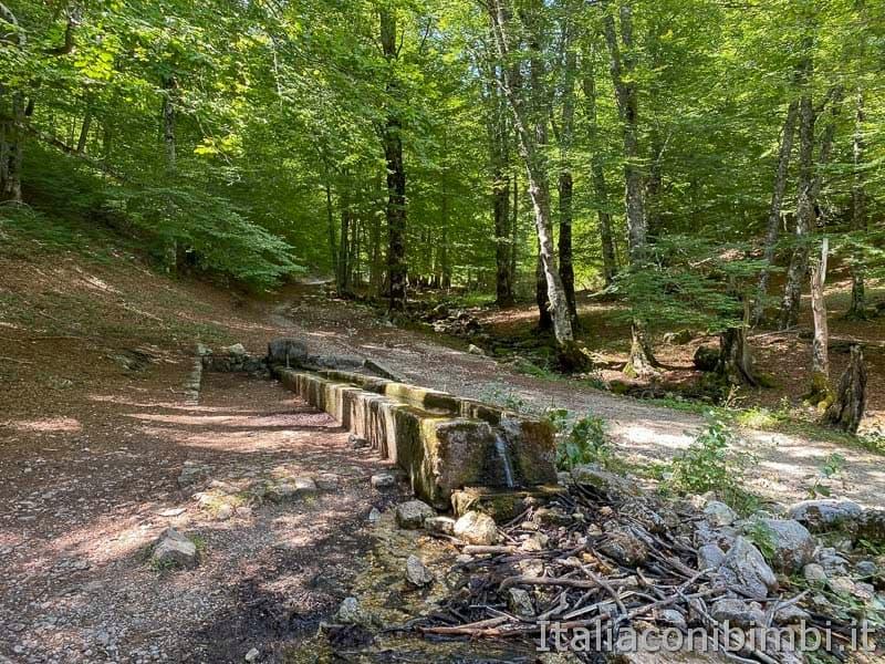 Val Fondillo - fontanile della fonte Sfranatara