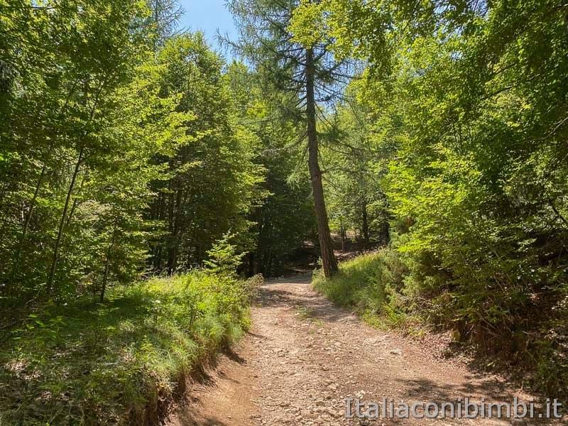 Val Fondillo - sentiero F2 ultimo tratto