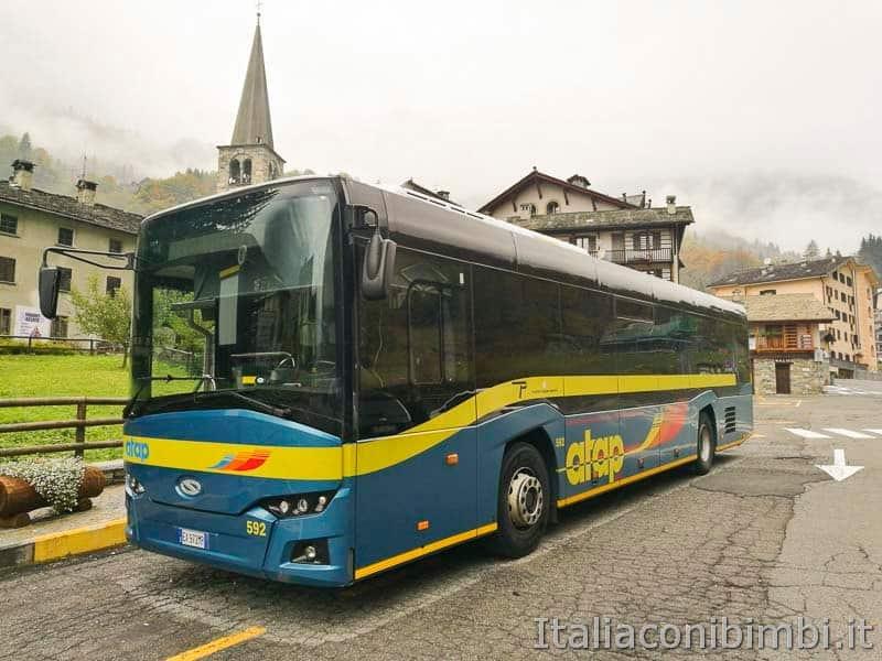 autobus - atap