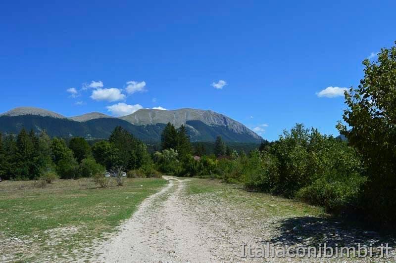 Bosco della difesa - sentiero C 1 -