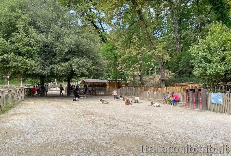 Parco Natura Viva - bambini nella fattoria
