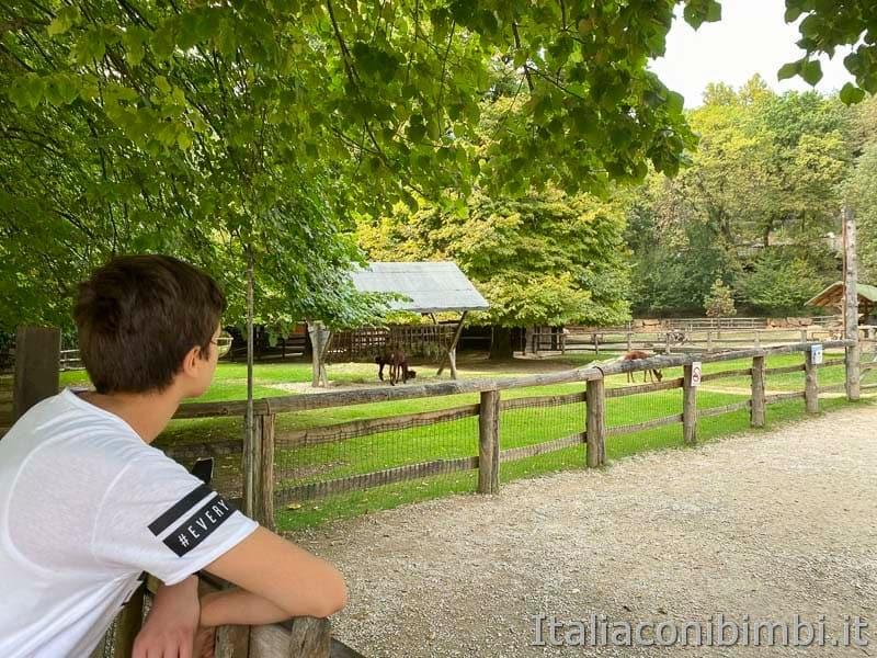 Parco Natura Viva - fattoria