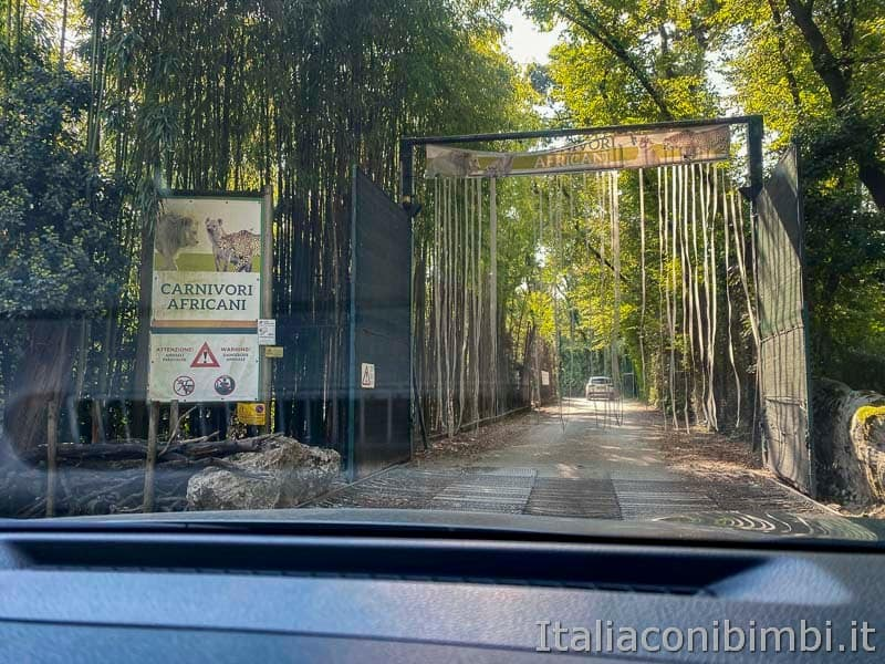 Parco Natura Viva - ingresso auto area carnivori