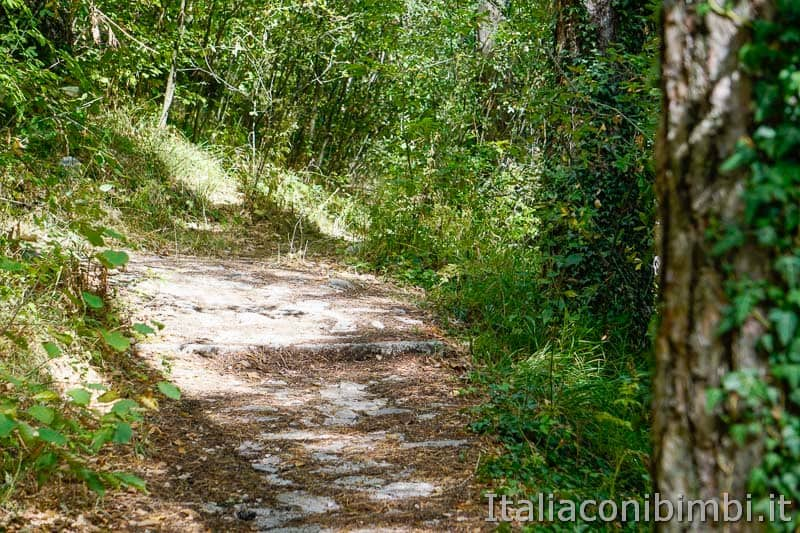 Sentiero B3 per Castel Mancino - Pescasseroli