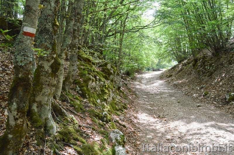 Sentiero Rifugio Cicerana - Abruzzo - segnale sull'albero