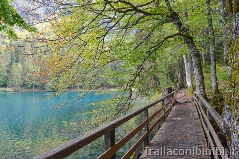 Laghi di Fusine - lago inferiore - passerella di legno