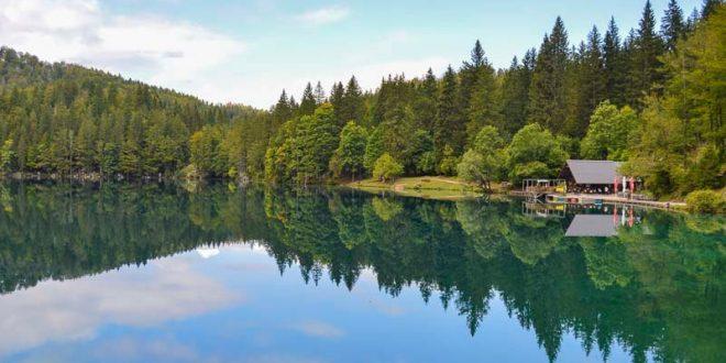Laghi di Fusine - lago inferiore - riflessi