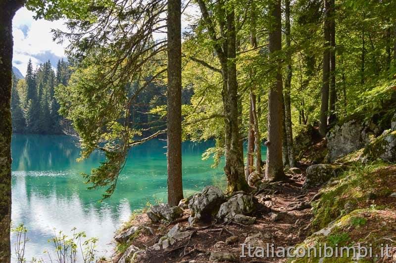 Laghi di Fusine - lago inferiore - sentiero - pietre