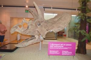 dinosauri Muse museo della scienza di Trento