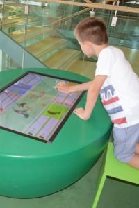 gioco Muse museo della scienza di Trento