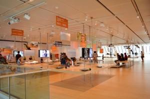 primo piano del Muse museo della scienza di Trento
