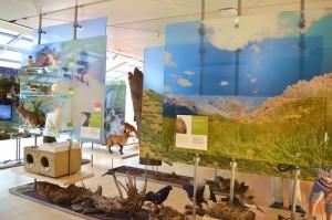 terzo piano del Muse museo della scienza di Trento